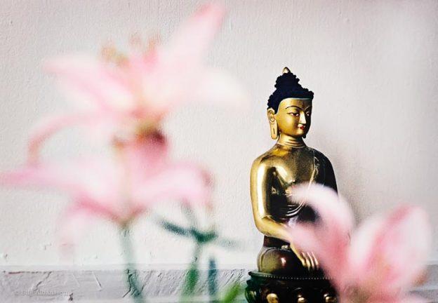 Buddha och blommer - föreningen för tibetansk buddhism i Göteborg